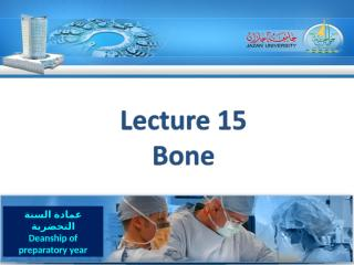 lecture 15 (1436).ppt