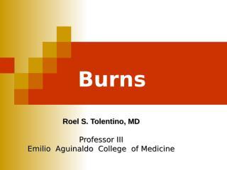 Burns 2013 quiz.ppt