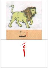 بطاقات الكلمات نموذج 2 للحائط في آخر كتاب القراءة.pdf