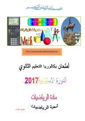 bacmath2017-2.pdf