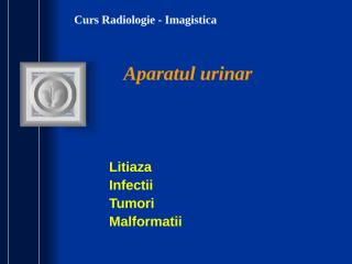 Curs VI MG RENAL 2.ppt